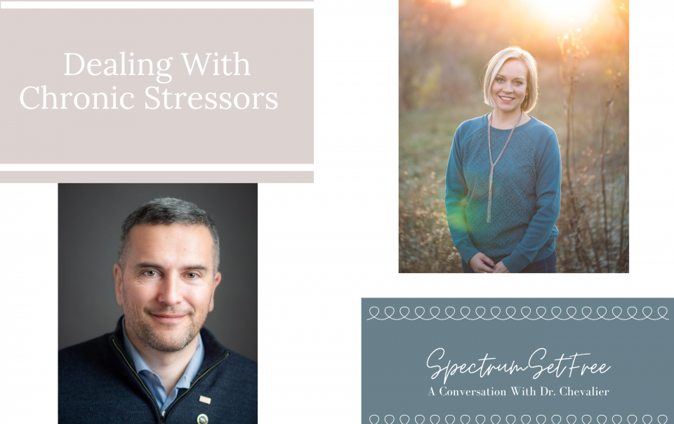 Chronic Stressors and Autism Families